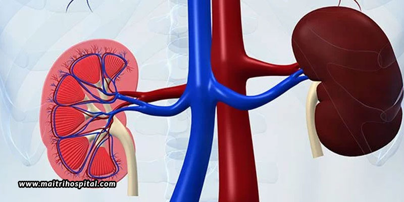 How-Does-The-Kidney-Fail-And-How-To-Prevent-It